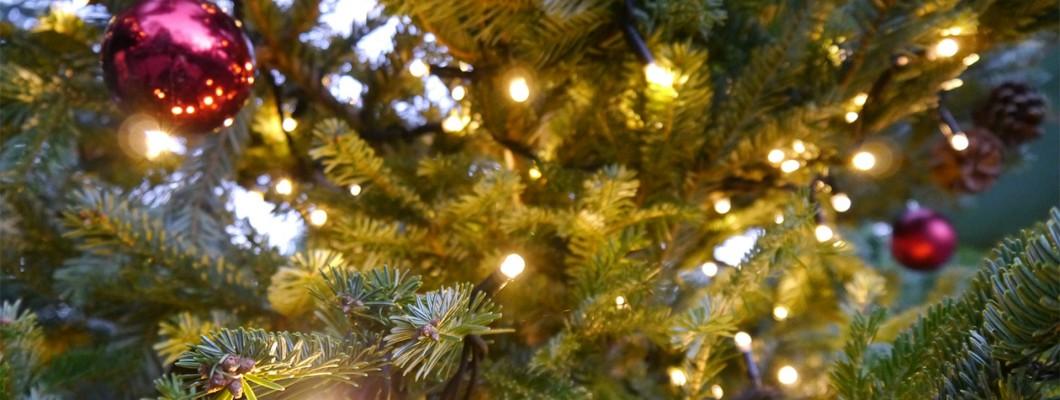 Frank Key Christmas Opening Hours 2020