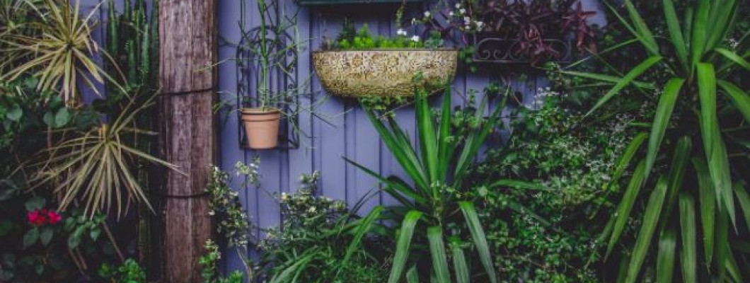 How to increase your house price with a garden