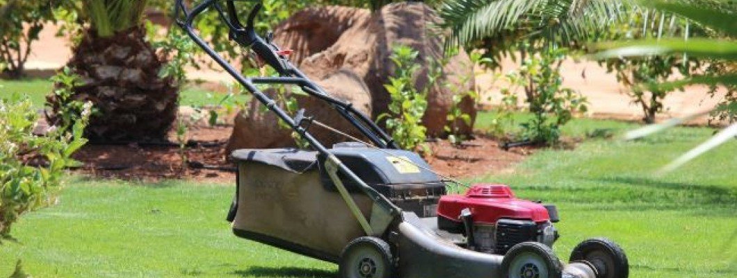 How to choose the best lawn mower for your garden