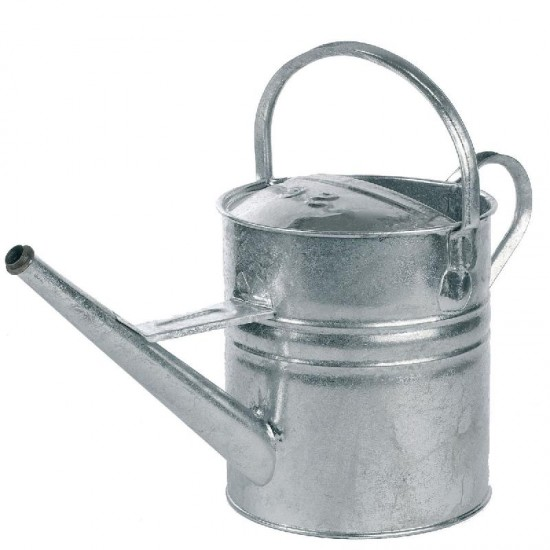 Watering Can Only 2 Gallon Galvanised